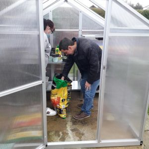 tem greenhouse